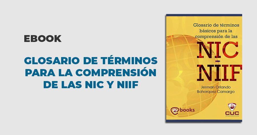 ebook glosario términos comprensión NIIC NIIF