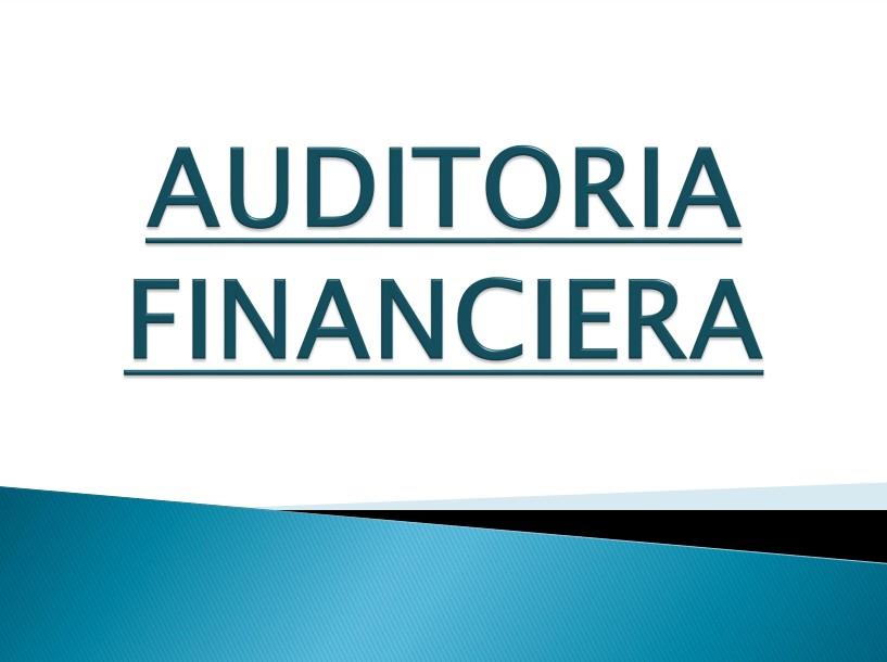 manual auditoria financiera