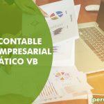 Plan contable general empresarial automático VB