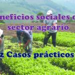 Beneficios sociales del sector agrario