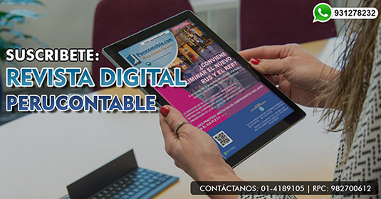Revista Contable Perucontable